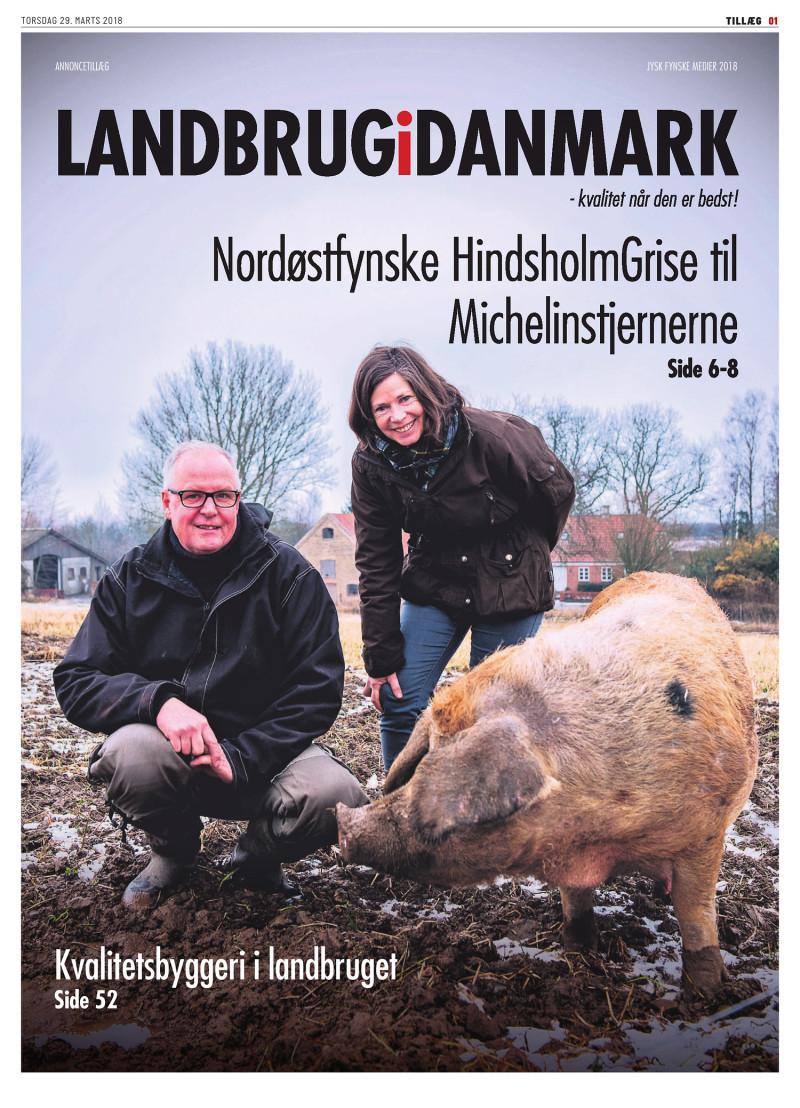 dansk supermarked tillæg